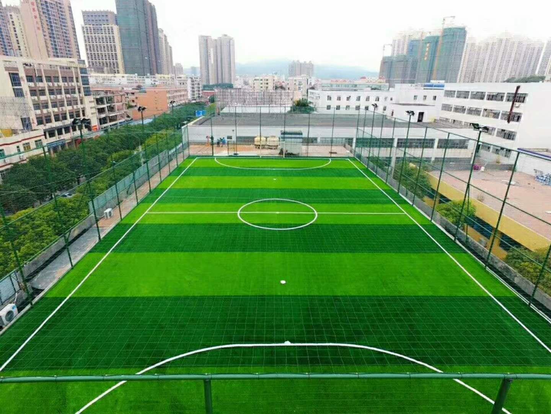 文创园足球场